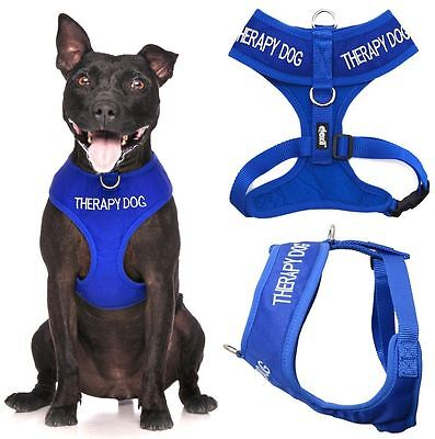 THERAPY DOG Blue Non Pull Waterproof Padded Pet Vest Harness Front Back Ring New