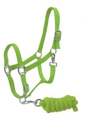 LIME GREEN Full Size Adjustable Nylon Horse Halter w/ 7' Braided Cotton Lead NEW