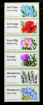 GB Post & Go Pictorials Flora 2 - set of both types