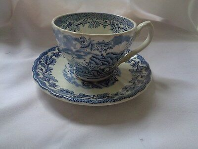 """Myotts Transferware """"Country Life"""" Blue Cup And Saucer"""