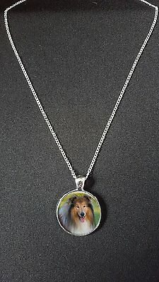 """Rough Collie Pendant On 18"""" Silver Plated Fine Metal Chain Necklace Gift N513"""