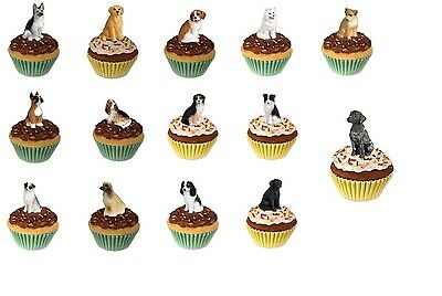 Adorable Pupcake Dog Trinket Box Figurine ~~ Choose Your Breed! Great Gift!
