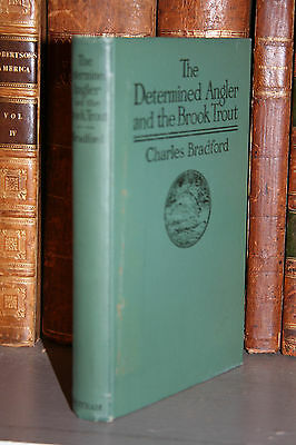 1916 hc THE DETERMINED ANGLER and THE BROOK TROUT Angling Fishing Free Ship