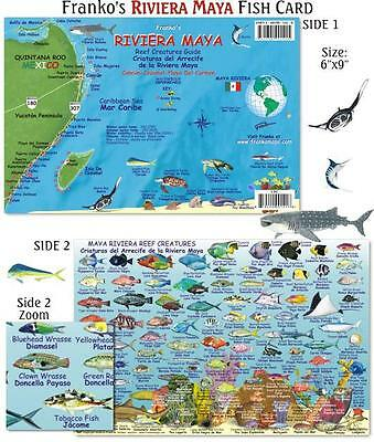 Franko Maps Riviera Maya Reef Creatures Fish ID for Scuba Diving and Snorkelers