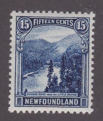 Newfoundland 1923-24 #142 Pictorial Issue Little Rapids MNH VF
