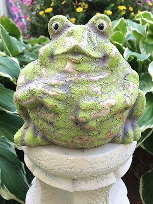 Garden Dcor Frogs Amphibians Reptiles Animals Collectibles