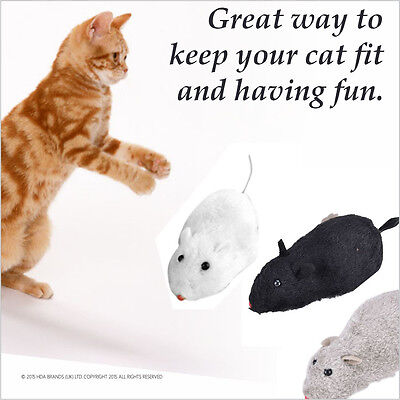 Wind Up Running Mouse Kitten Cat MICE RAT Pets Play & Chase Toys Games Race 3pcs