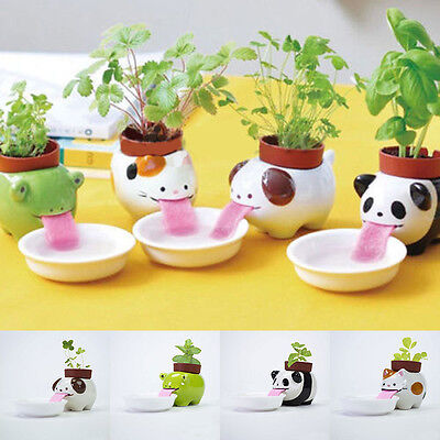 Ceramic Cultivation Peropon Drinking Animal Tougue Self Watering Planter XT New