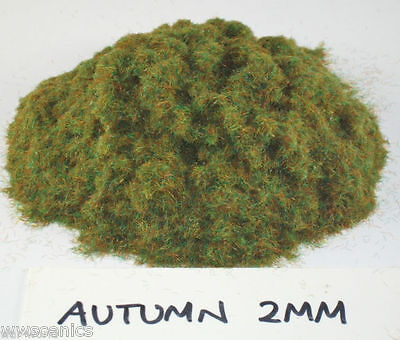 War World Scenics 2mm Autumn Mix Static Grass Select Weight