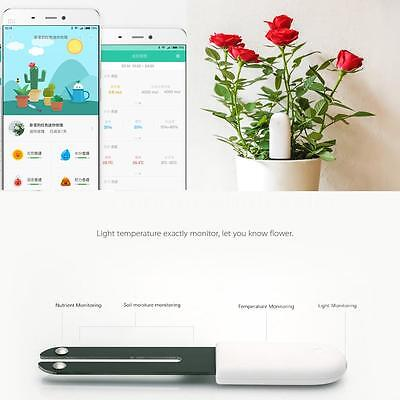 Xiaomi 4in1 Plants Tester Light Temperature Monitoring + Bluetooth Durable N5X4