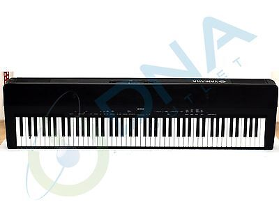 Yamaha P140 Portable Digital Piano & Warranty