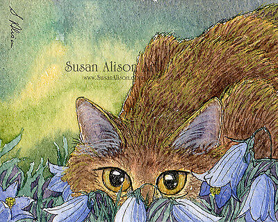 cat 8x10 print stalking harebells bluebells playing wild flowers Susan Alison