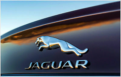 Instant Jaguar X-Type Radio Code From The Serial Number Ja Or M