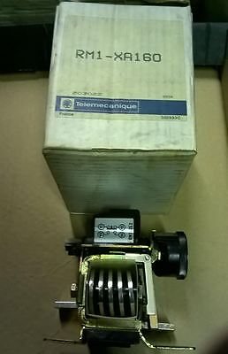 Telemecanique Protection Relay RM1-XA160