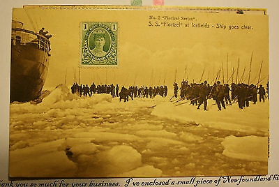 Newfoundland S.s. Florizel- Ice Fields + Nfld Regiment 1St 500 Carrier Postcard
