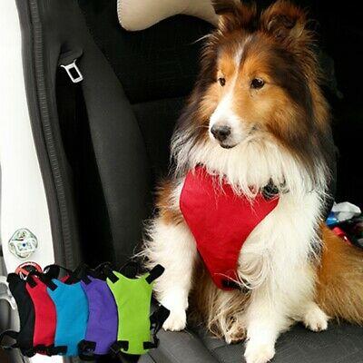 Dog Harness Puppy Pet Safety Seat Belt Restraint Lead Leash Car Auto Travel Vest