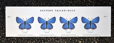 USA2016 #5136 68c Eastern Tailed-Blue Butterfly - Header Plate Strip of 4  Mint