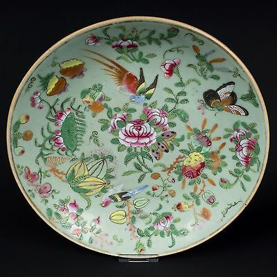China 19. Jh. Canton Teller - A Chinese Famille Rose Dish - Qing Chinois Cinese