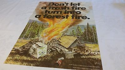 Smokey Bear Poster Don't Let Trash Turn Into A Forest Fire Gov't  Issue 1970's