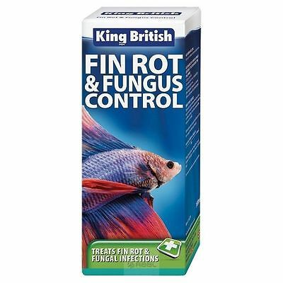 King British Fin Rot & Fungus Control 100ml Fish Fungal Disease Treatment