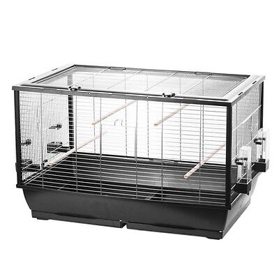 Bird Cage Budgerigar Canary with Free flight after top