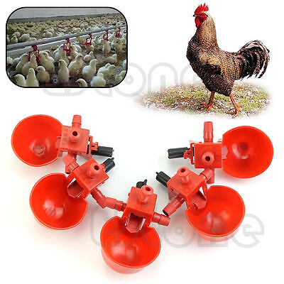 5Pcs Poultry Automatic Water Drinking Cups Bird  Feed Coop Chicken Fowl Drinker