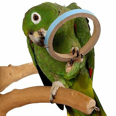 Birdie Bangles Parrot Foot Toys African Grey Amazon Macaw Cockatoo