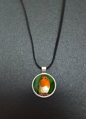 """Robin Bird Pendant On a 18"""" Black Cord Necklace Ideal Birthday Gift N440"""