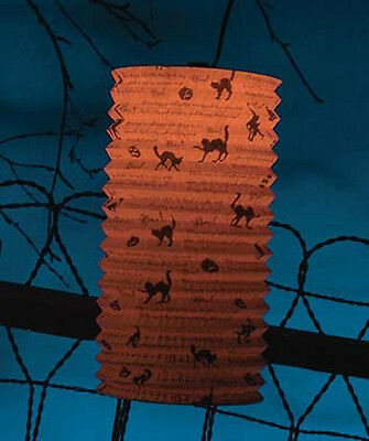 There Was An Old Witch Paper Lantern w C7 Light Halloween Bethany Lowe LG4563