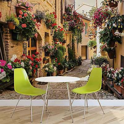 WALL MURAL Greece Flower Street XXL PHOTO WALLPAPER (1339DC)