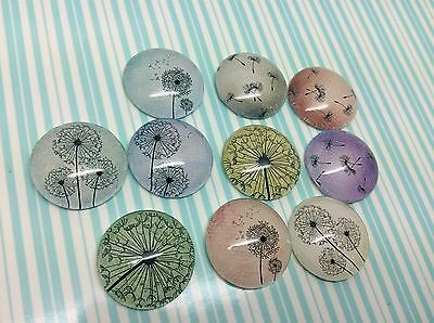 10 x 20mm Pastel Dandelion Seed Head Image Glass Cabochons for jewellery,charms