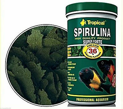 SPIRULINA SUPER FORTE 36% PROFESSIONAL AQUARIUM FLAKE FOOD (Factory Sealed)