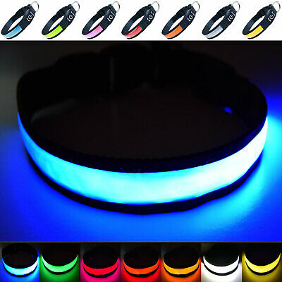 USB Rechargeable LED Dog Safety Collar - Great Visibility & Improved Safety