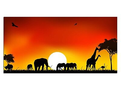 HD Glasbild EG4100500437 AFRIKA TIERWELT ORANGE 100 x 50 cm Wandbild LANDSCHAFT