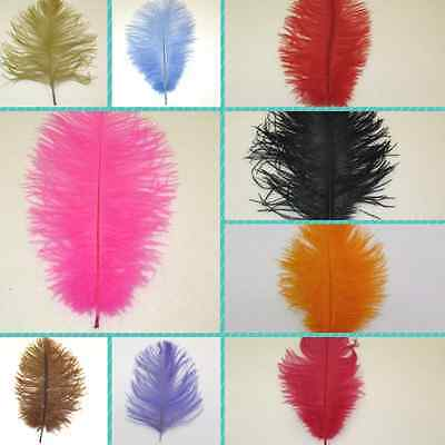 Ostrich Feathers Packs of 10 Choose From 18 Colours