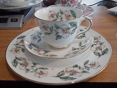 Crown Staffordshire Cup & Saucer TRIO -  PEAR BLOSSOM