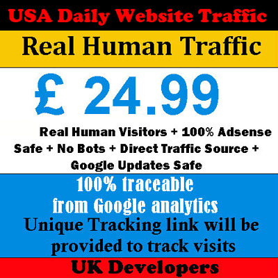 2500+ Real Human Visitors Per Day Your Website Traffic 30 Days 100% Adsense Safe