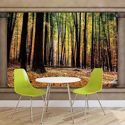 WALL MURAL Nature Woodland Forest Window View XXL PHOTO WALLPAPER (2865DC)