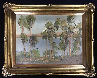 Isabel Mackenzie Gum Trees at Rivers edge Original Oil Painting