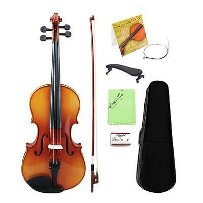 AU-2 16 Inch Viola Spruce Faceboard Maple Wood Backboard for Students W3P8