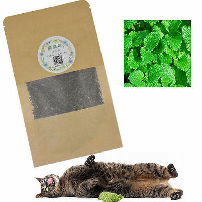 Pet Supplies Natural Fancy Cat Dried Catnip Novelty Kitten Relax Catmint Toy