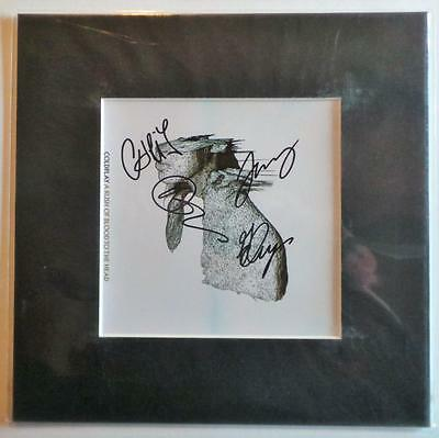 "Coldplay Rush Of Blood Signed Pre Print 10"" X 10"" With Mount Ready To Frame"