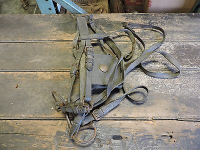 Antique US Army/Calvary Leather Horse Bit & Bridle W/ Blinders, Nice