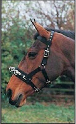 Hy Lunge Cavesson - Black - Small - Horse Equestrian Lunge Lines