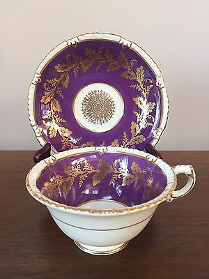 Paragon PURPLE with GOLD LEAVES Footed Cup & Saucer Set ~ England
