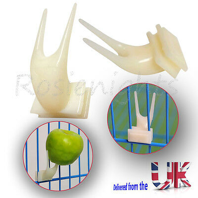 Pet Parrot Fruit Fork Birds Food Holder Feeder Device Pin Clip Budgie Canary