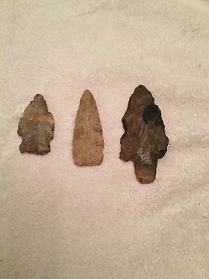 3 Reeds Spring Missouri Native American Arrowheads And Spear Point