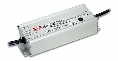 60W single output constant current LED power supply 700mA 50-100V
