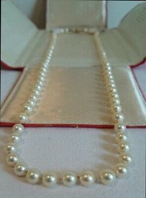 Antique Cultured Pearls with 14ct Yellow Gold & Diamond Clasp