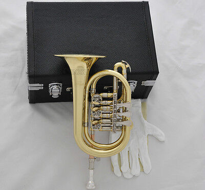 Professional New Gold Rotary Valve Cornet Bb Horn Cupronickel Pipe With case